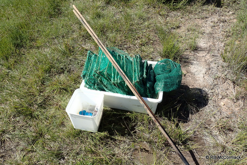 Super yabby trap in fish box, 2 stakes and bait