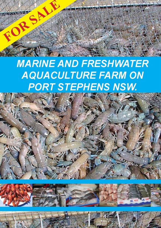 Swan Bay Fish-Yabby Farm For Sale -low resolution_Page_1